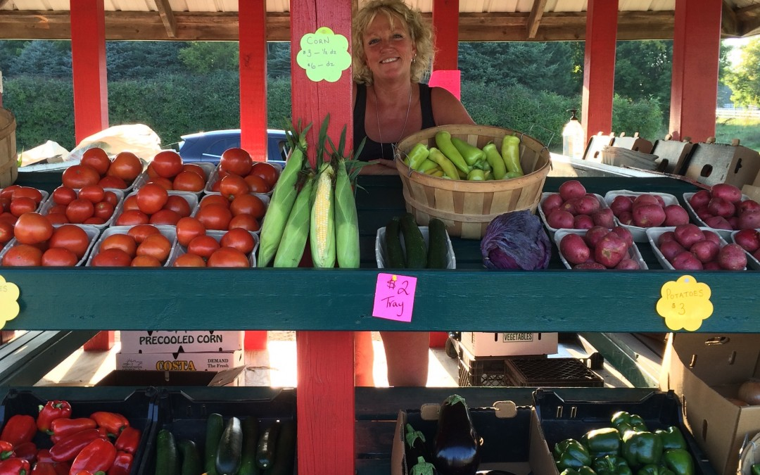 Cornstand Open Daily…Fresh Sweet Corn, tomatoes, cucumbers, beans, peppers and MORE!